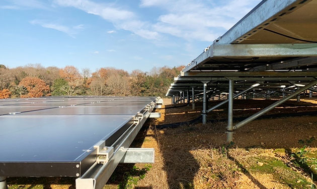 太陽光発電所の雑草対策