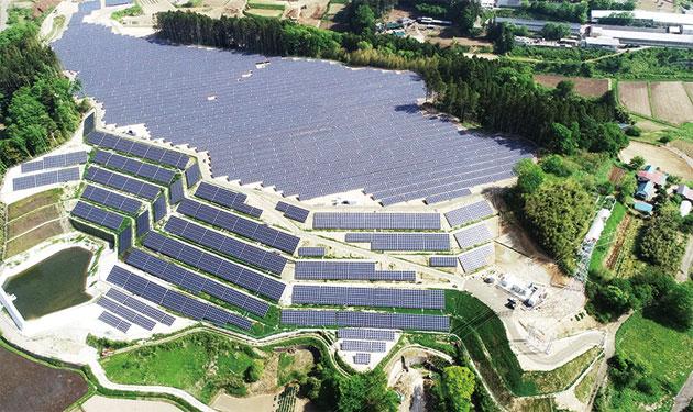 持続可能な太陽光発電所開発へ 開発用地の生態系を再設計